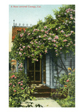 California - Exterior View of a Rose-Covered Cottage