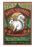 Brevard  North Carolina - White Squirrel
