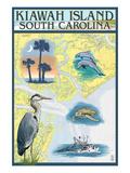 Kiawah Island  South Carolina - Nautical Chart