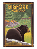 Bigfork  Montana - Bear in Forest