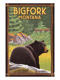 Bigfork  Montana - Bear in Forest