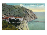 Santa Catalina Island  California - Aerial View of Hotel St Catherine