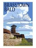 Brasstown Bald  Georgia - Tower and Benchmark
