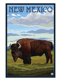Buffalo Scene - New Mexico