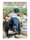 Smokey Mountains  North Carolina - Bears Fishing
