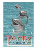 Tampa  Florida - Dolphins