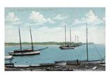 Tarpon Springs  Florida - Anclote River Scene
