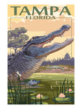 Tampa  Florida - Alligator Scene