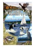 Washington - Montage