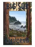 Big Sur  California - Trees and Ocean Scene