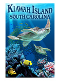 Kiawah Island  South Carolina - Sea Turtles Swimming