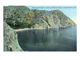 Santa Catalina Island  California - Aerial View of the Banning Residence  Canyon Mouth