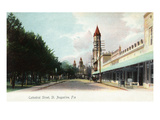 St Augustine  Florida - View Down Cathedral Street