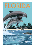 Florida - Dolphins Jumping