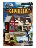 Cayucos  California - Montage Scenes