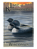 Lake Koshkonong  Wisconsin - Loons