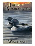 Lake Koshkonong  Wisconsin - Loons