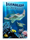 Islamorada  Florida Keys - Sea Turtles