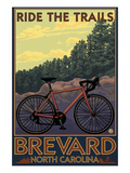 Brevard  North Carolina - Ride the Trails Bicycle