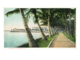 Palm Beach  Florida - View of the Walk Along Lake Worth