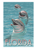 Dolphin Trio - Florida