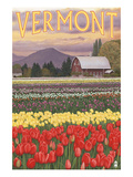 Vermont - Tulip Fields