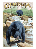 Georgia - Black Bears Fishing