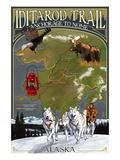 Iditarod Trail Topographic Map - Alaska