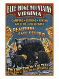Blue Ridge Mountains  Virginia - Black Bear Family