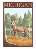 Michigan - White Tailed Deer
