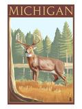 Michigan - White Tailed Deer