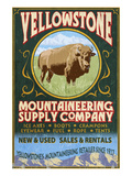 Yellowstone National Park - Bison Mountaineering