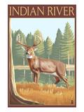 Indian River  Michigan - Deer Scene