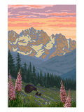 Spring Flowers and Bear Family Mountains