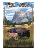 Mount Rushmore National Memorial  South Dakota - Bison Scene