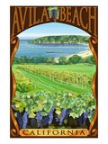 Avila Beach  California - Vineyard and Ocean Scene