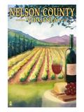 Nelson County  Virginia - Vineyard Scene