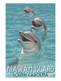 Kiawah Island  South Carolina - Dolphins