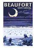 Beaufort  South Carolina - Sea Turtles Hatching
