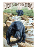 Black Bears Fishing - Great Smoky Mountains
