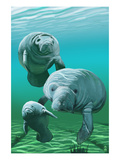 Manatees