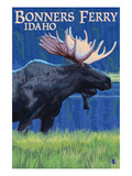 Bonners Ferry  Idaho - Moose at Night