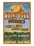 Mount Dora  Florida - Orange Orchard Sign