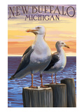 New Buffalo  Michigan - Seagull Scene