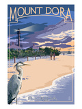 Mount Dora  Florida - Blue Heron and Beach