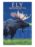 Ely  Minnesota - Moose at Night