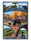 Montage - Great Smoky Mountains National Park  TN
