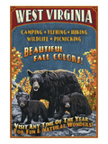 West Virginia - Black Bear Family