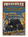 Indian River  Michigan - Bear Family