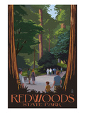 Redwoods State Park - Boardwalk